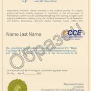 Сертификат образец BCSkills
